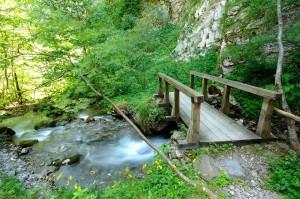 Most-na-rostuska-reka